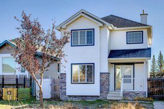 Main Photo: 94 Saddlemead Road NE in Calgary: Saddle Ridge Detached for sale : MLS®# A1154951