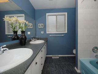 Photo 16: 3959 Marjean Pl in Victoria: Residential for sale : MLS®# 287191
