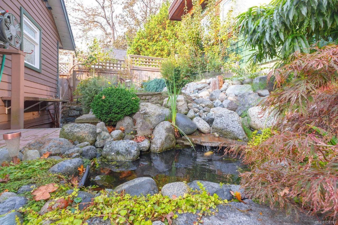 Photo 34: Photos: 1542 Westall Ave in : Vi Oaklands House for sale (Victoria)  : MLS®# 858195