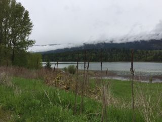 Photo 3: Lot D White Lake Road: Tappen Land Only for sale (Shuswap)  : MLS®# 10207737