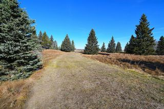 Photo 23: 20.02 Acres +/- NW of Cochrane in Rural Rocky View County: Rural Rocky View MD Land for sale : MLS®# A1065950