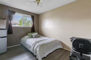 Photo 18: 2908 84 Street in Edmonton: Zone 29 House for sale : MLS®# E4249144