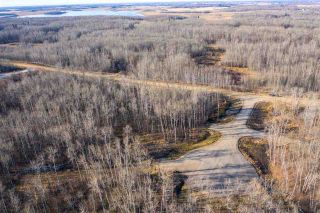 Photo 7: 40 50367 RR 222: Rural Leduc County Rural Land/Vacant Lot for sale : MLS®# E4220000