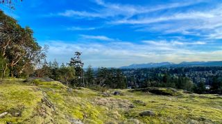 Photo 7: 3450 BARRINGTON Rd in : Na Departure Bay Land for sale (Nanaimo)  : MLS®# 869058