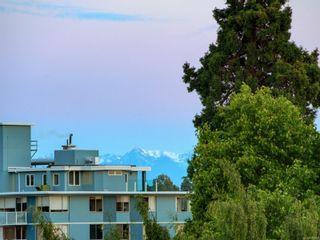 Photo 25: 505 788 Humboldt St in Victoria: Vi Downtown Condo for sale : MLS®# 878994
