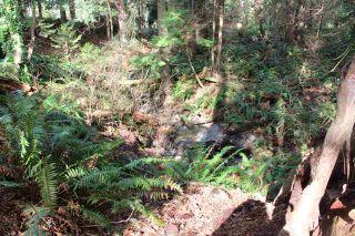 Photo 13: 5852 MARINE Way in Sechelt: Sechelt District Land for sale (Sunshine Coast)  : MLS®# R2545877