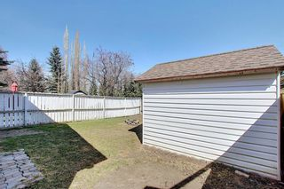 Photo 46: 66 Erin Green Way SE in Calgary: Erin Woods Detached for sale : MLS®# A1094602