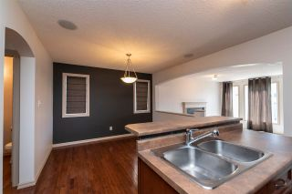 Photo 21: 9143 213 Street in Edmonton: Zone 58 House for sale : MLS®# E4250638