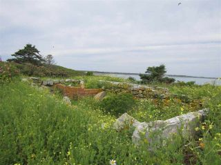 Photo 15: Pages Island in Port La Tour: 407-Shelburne County Vacant Land for sale (South Shore)  : MLS®# 202022571