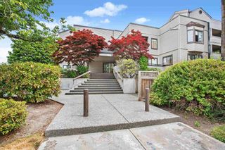 """Photo 1: 203 5224 204 Street in Langley: Langley City Condo for sale in """"SOUTH WYNDE COURT"""" : MLS®# R2600463"""