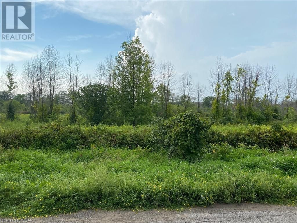 Main Photo: LOT 7 SULLY Road in Hamilton Twp: Vacant Land for sale : MLS®# 40139339