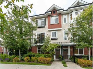 Photo 1: 41 8068 207 Street in Langley: Willoughby Heights Townhouse for sale : MLS®# R2378119