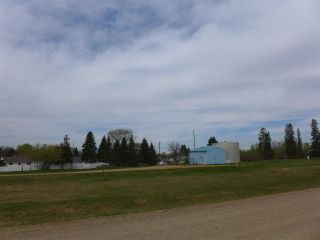Photo 25: 50 Ave RR 281: Rural Wetaskiwin County Rural Land/Vacant Lot for sale : MLS®# E4191216