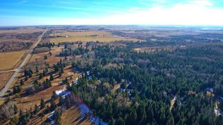 Photo 13: 20.02 Acres +/- NW of Cochrane in Rural Rocky View County: Rural Rocky View MD Land for sale : MLS®# A1065950