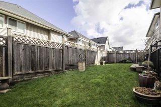 """Photo 36: 8076 209 Street in Langley: Willoughby Heights House for sale in """"YOKSON"""" : MLS®# R2561257"""