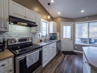 Photo 10: 139 Springs Crescent SE: Airdrie Detached for sale : MLS®# A1065825