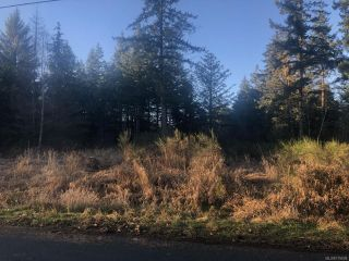 Photo 2: LT A Wilson Rd in COURTENAY: CV Courtenay North Land for sale (Comox Valley)  : MLS®# 775609