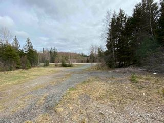 Photo 3: Sherbrooke Road in Greenvale: 108-Rural Pictou County Vacant Land for sale (Northern Region)  : MLS®# 202111683