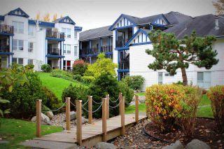 """Photo 2: 106 4955 RIVER Road in Delta: Neilsen Grove Condo for sale in """"Shore Walk"""" (Ladner)  : MLS®# R2302052"""