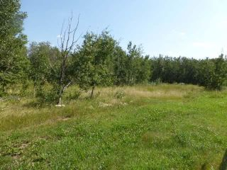 Photo 13: 40 26555  Twp 481: Rural Leduc County Rural Land/Vacant Lot for sale : MLS®# E4258053