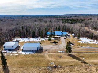 Photo 7: 50206A RR 91: Rural Brazeau County House for sale : MLS®# E4236017