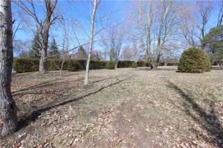 Photo 7: 1688 Lakeshore Drive in Ramara: Rural Ramara Property for sale : MLS®# S3763412