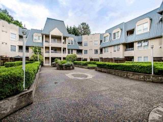 """Photo 19: 306 295 SCHOOLHOUSE Street in Coquitlam: Maillardville Condo for sale in """"Chateau Royale"""" : MLS®# R2466921"""