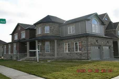 Main Photo: 389 Wilfred Murison Avenue in Markham: House (2-Storey) for sale : MLS®# N1579468