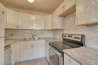 Photo 5: 3738 CEDARILLE Drive SW in Calgary: Cedarbrae Semi Detached for sale : MLS®# A1037615