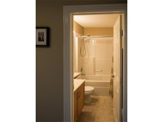 Photo 28: 40 BRIDLEWOOD View SW in Calgary: Bridlewood House for sale : MLS®# C4049612