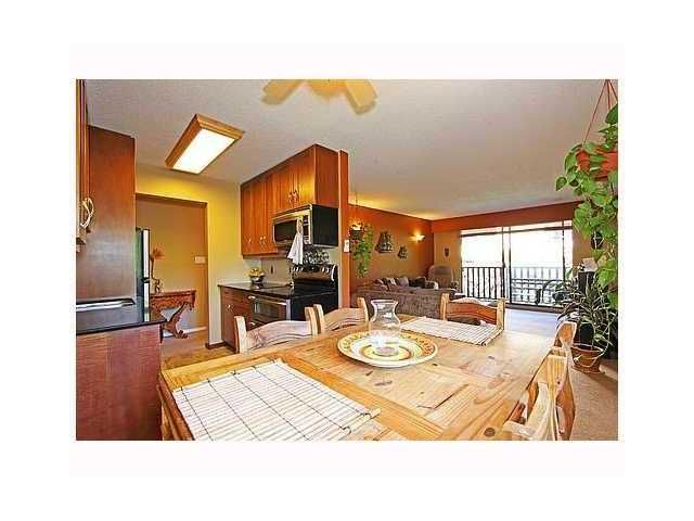 "Main Photo: 204 310 W 3RD Street in North Vancouver: Lower Lonsdale Condo for sale in ""DEVON MANOR"" : MLS®# V907824"