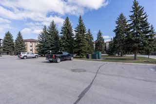 Photo 31: 301 679 St Anne's Road in Winnipeg: St Vital Condominium for sale (2E)  : MLS®# 202110259