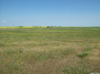 Photo 4: Eagle Creek Acreage 80 Acres in Asquith: Lot/Land for sale : MLS®# SK863384