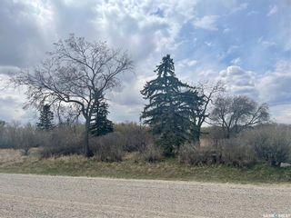 Photo 5: CAMPA 10 Acres in Drake: Residential for sale : MLS®# SK858853