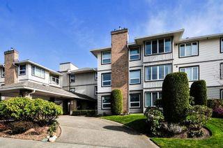 Photo 1: 205 1234 MERKLIN STREET: White Rock Home for sale ()  : MLS®# R2009764