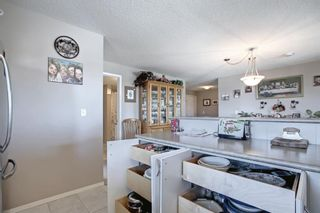 Photo 14: 344 428 Chaparral Ravine View SE in Calgary: Chaparral Apartment for sale : MLS®# A1152351