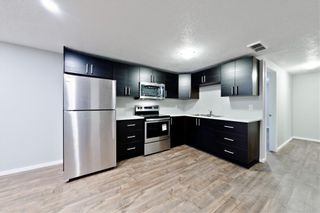 Photo 21: 100 DOVERVIEW Place SE in Calgary: Dover Detached for sale : MLS®# A1024220
