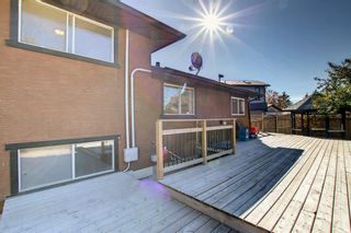 Photo 44: 1931 Pinetree Crescent NE in Calgary: Pineridge Detached for sale : MLS®# A1153335