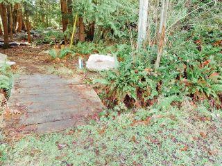 Photo 5: 6151 HARBOUR Way in Sechelt: Sechelt District Land for sale (Sunshine Coast)  : MLS®# R2530969