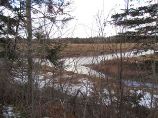 Photo 5: 2127 Highway 236 in Mosherville: 403-Hants County Vacant Land for sale (Annapolis Valley)  : MLS®# 202100967