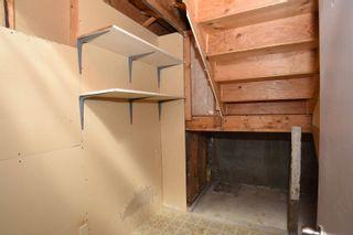Photo 46: 10 SYLVAN Street: Devon House for sale : MLS®# E4262711