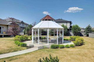 Photo 48: 6 18230 104A Street in Edmonton: Zone 27 House Half Duplex for sale : MLS®# E4253694