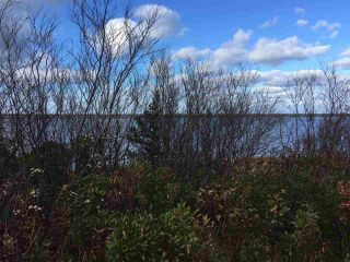 Photo 8: Lot 2 Shore Road in Lower Barneys River: 108-Rural Pictou County Vacant Land for sale (Northern Region)  : MLS®# 202008057