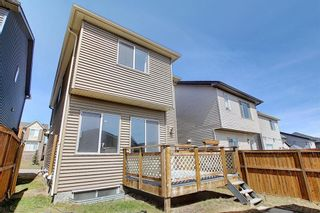 Photo 42: 55 Nolanfield Terrace NW in Calgary: Nolan Hill Detached for sale : MLS®# A1094536