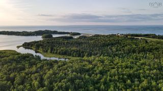 Photo 25: 305 Black Point Road in Black Point: 108-Rural Pictou County Residential for sale (Northern Region)  : MLS®# 202114215