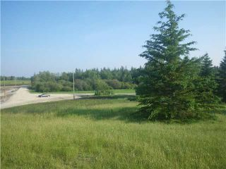Photo 5: 314 55504 Rge Rd 13: Rural Lac Ste. Anne County Rural Land/Vacant Lot for sale : MLS®# E4213581