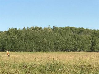 Photo 26: 57525 Rg Rd 214: Rural Sturgeon County Rural Land/Vacant Lot for sale : MLS®# E4192257