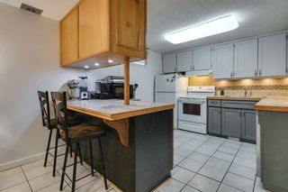 Photo 27: 2304 54 Avenue SW in Calgary: North Glenmore Park Detached for sale : MLS®# A1102878