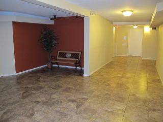 Photo 16: 306 525 AGNES Street in New Westminster: Downtown NW Condo for sale : MLS®# R2015495