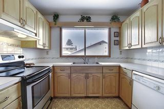 Photo 5: 4323 49 Street NE in Calgary: Whitehorn Detached for sale : MLS®# A1043612